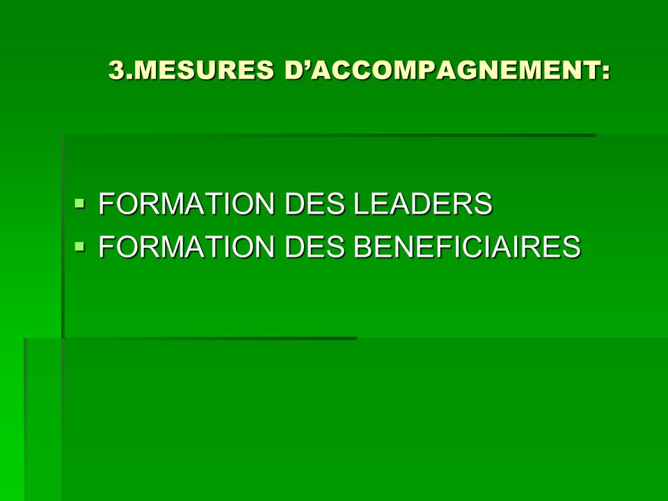 3.MESURES DACCOMPAGNEMENT: 3.MESURES DACCOMPAGNEMENT: FORMATION DES LEADERS FORMATION DES LEADERS FORMATION DES BENEFICIAIRES FORMATION DES BENEFICIAI