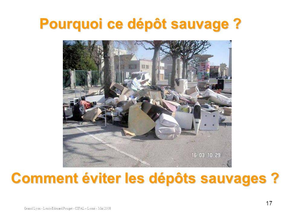 Grand Lyon - Louis-Edouard Pouget - CIFAL – Lomé - Mai 2008 17 Pourquoi ce dépôt sauvage .