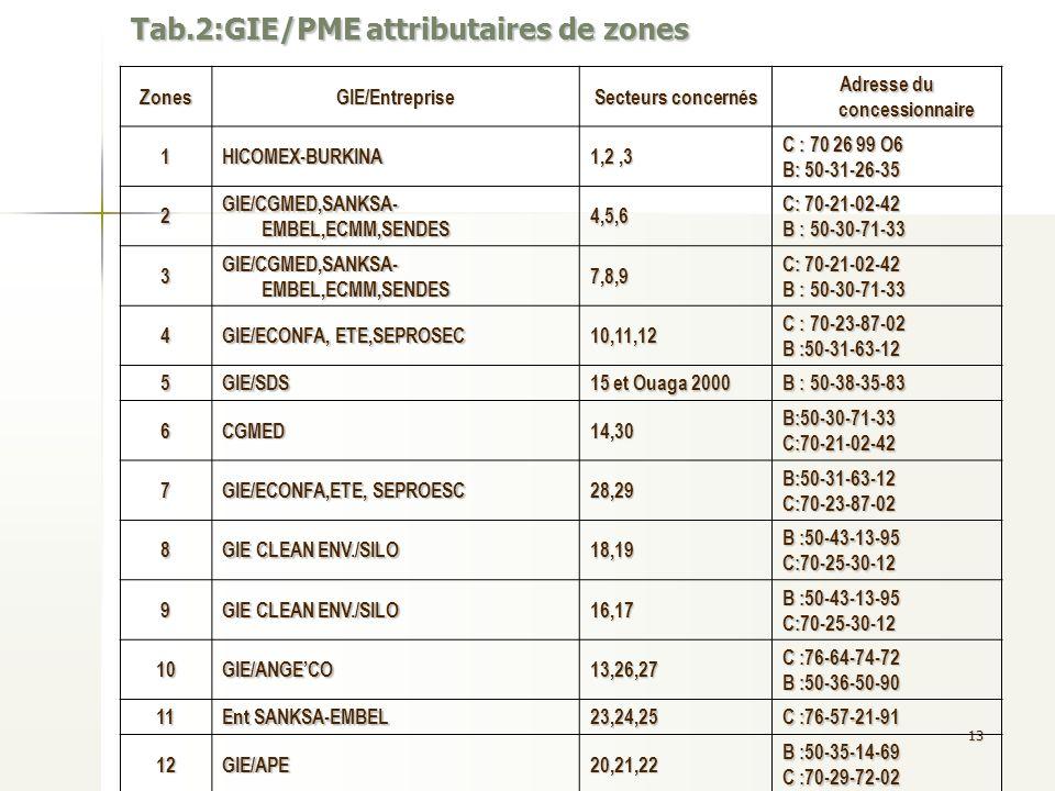 13 Tab.2:GIE/PME attributaires de zones ZonesGIE/Entreprise Secteurs concernés Adresse du concessionnaire 1HICOMEX-BURKINA1,2,3 C : 70 26 99 O6 B: 50-