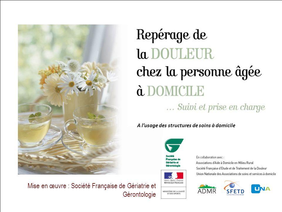 24 Mise en œuvre : Société Française de Gériatrie et Gérontologie Difficultés et troubles des apprentissages chez lenfant à partir de 5 ans A lusage d