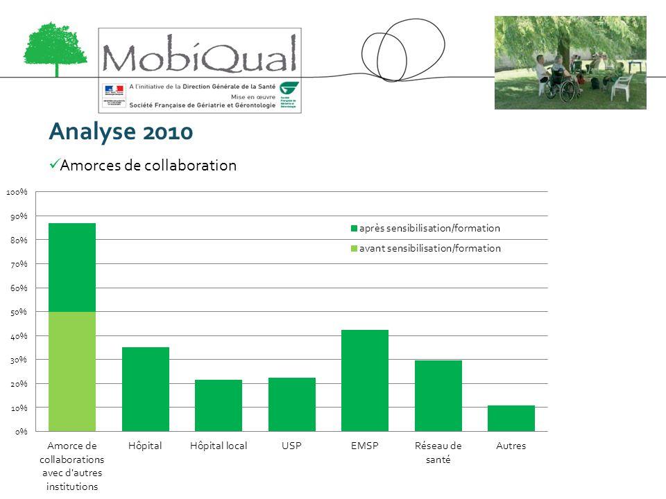 Analyse 2010 Amorces de collaboration
