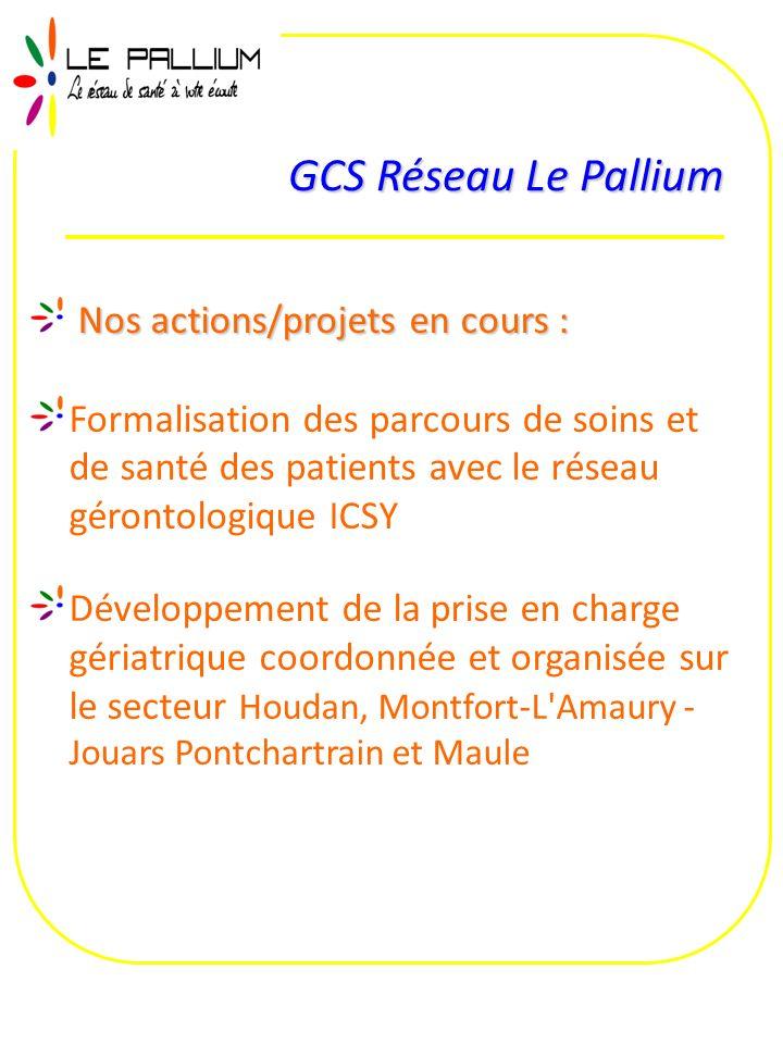 GCS Réseau Le Pallium Nos actions/projets en cours : Formalisation des parcours de soins et de santé des patients avec le réseau gérontologique ICSY D
