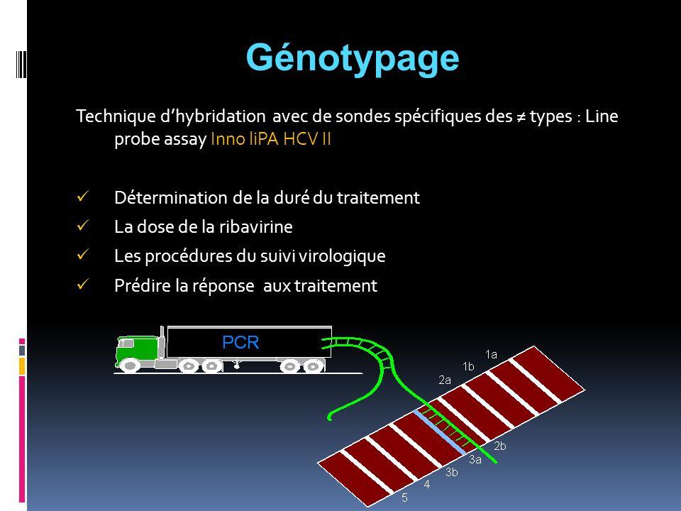 Technique dhybridation avec de sondes spécifiques des types : Line probe assay Inno liPA HCV II Détermination de la duré du traitement La dose de la r