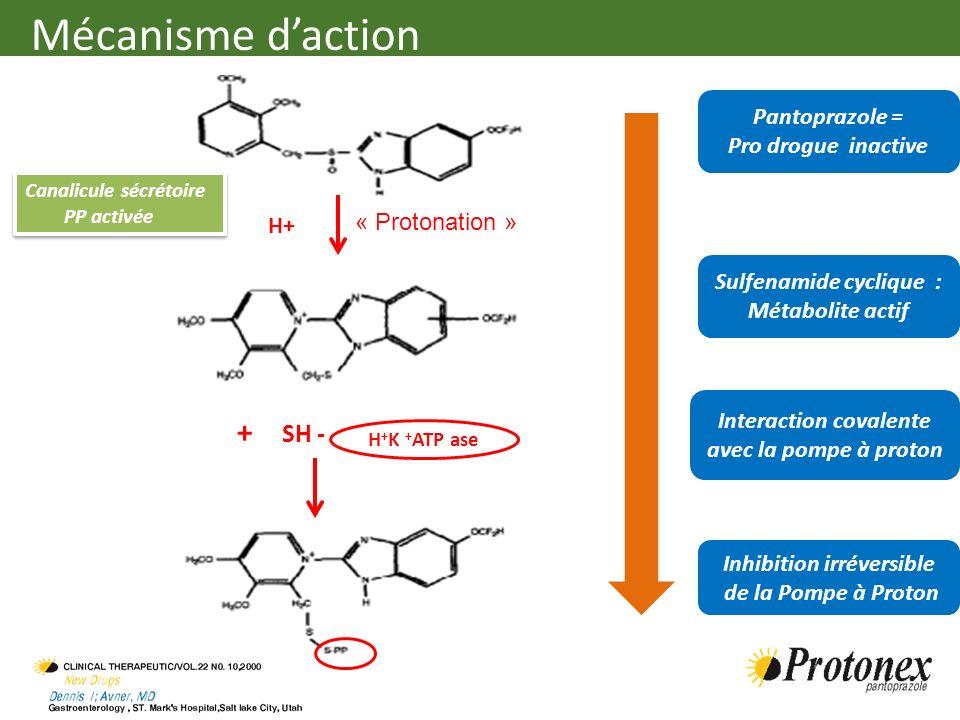 Pantoprazole = Pro drogue inactive H+ Sulfenamide cyclique : Métabolite actif + SH - Inhibition irréversible de la Pompe à Proton H + K + ATP ase Cana
