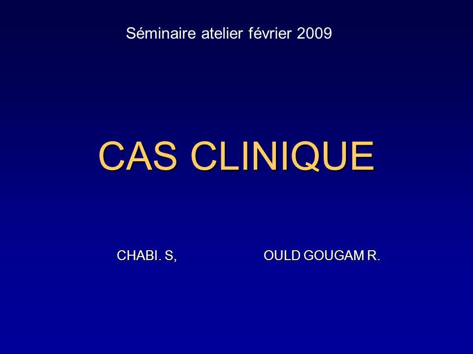 CAS CLINIQUE CHABI. S, OULD GOUGAM R. CHABI. S, OULD GOUGAM R. Séminaire atelier février 2009