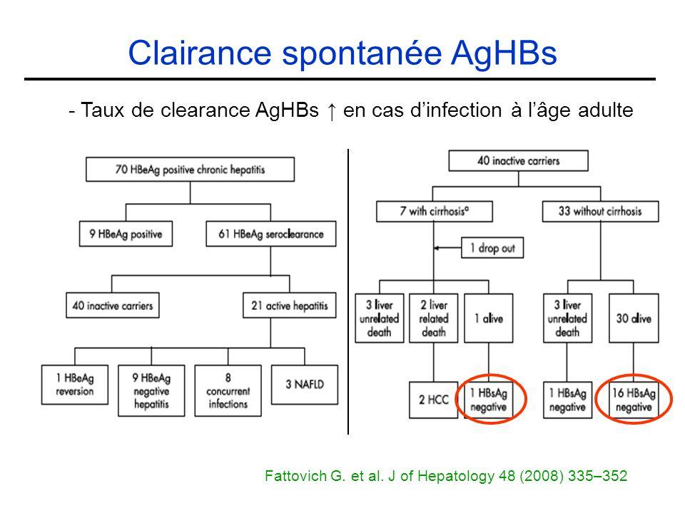 Clairance spontanée AgHBs - Taux de clearance AgHBs en cas dinfection à lâge adulte Fattovich G.
