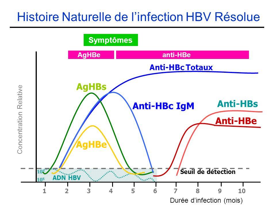 Histoire Naturelle de linfection HBV Résolue Anti-HBc Totaux 10 5 10 9 ADN HBV Seuil de détection Anti-HBs AgHBs Anti-HBc IgM AgHBe Concentration Relative Durée dinfection (mois) 1 2 3 4 5 6 7 8 9 10 Anti-HBe Symptômes AgHBe anti-HBe