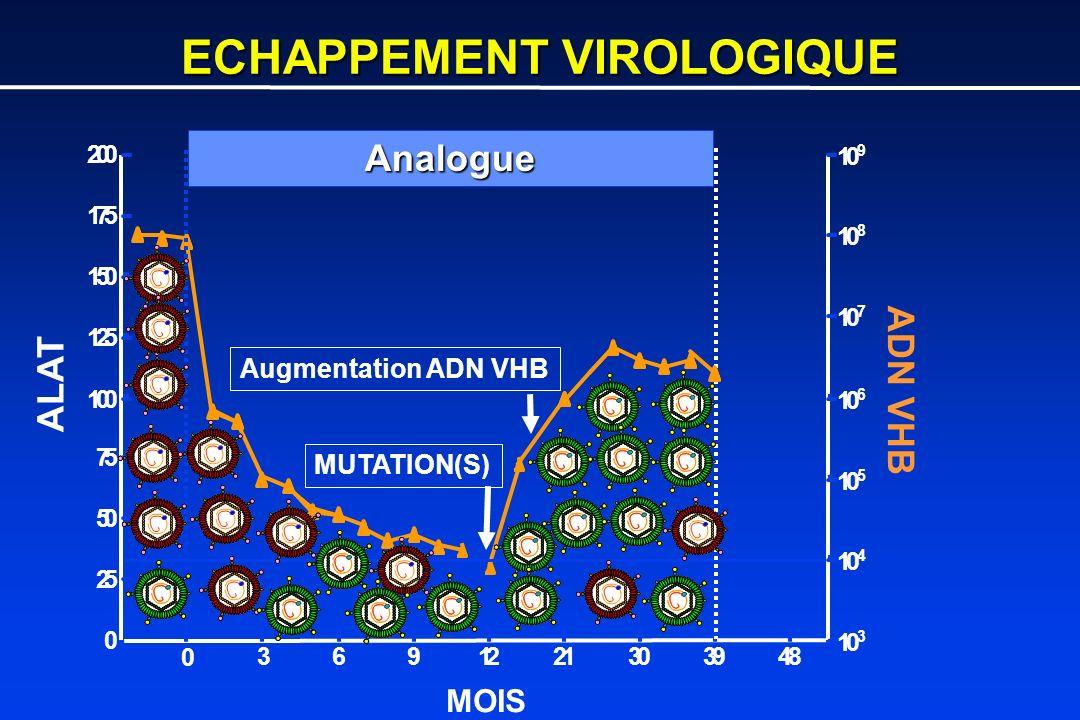 ECHAPPEMENT VIROLOGIQUE 0 3691221303948 0 25 50 75 100 125 150 175 200 10 3 10 4 10 5 10 6 10 7 10 8 10 9 ALAT ADN VHB MOIS Analogue MUTATION(S) Augme