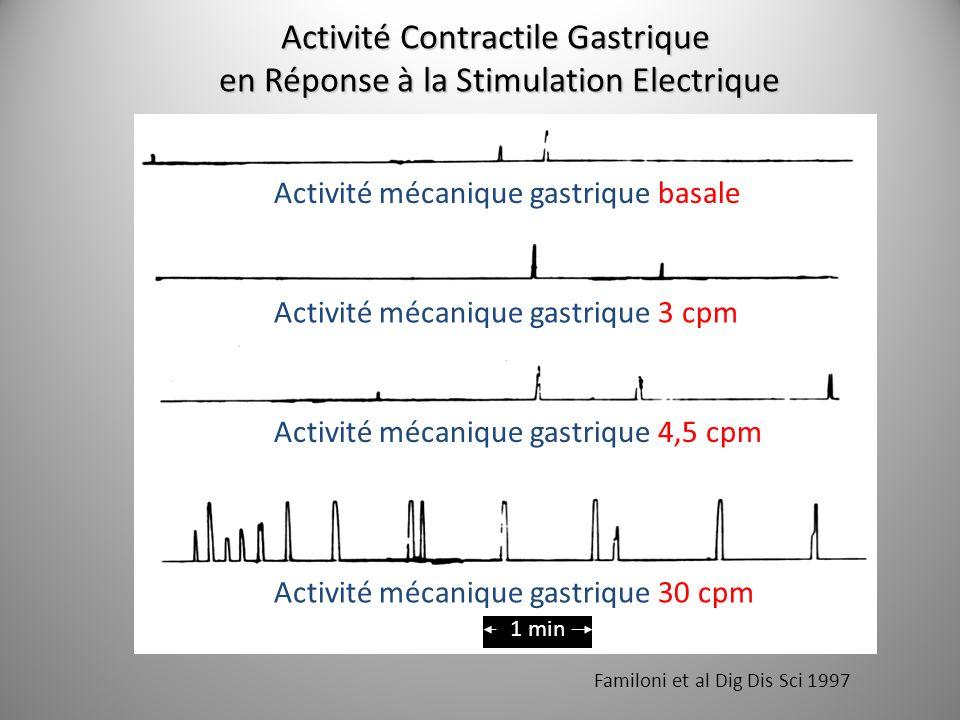 Activité Contractile Gastrique en Réponse à la Stimulation Electrique en Réponse à la Stimulation Electrique Familoni et al Dig Dis Sci 1997 1 min Act