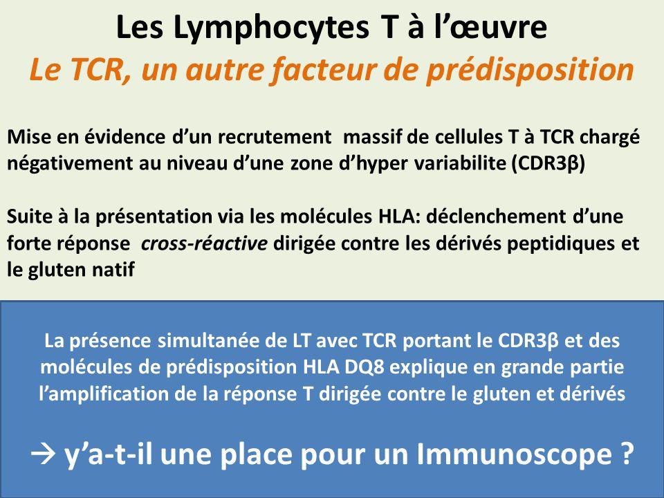 Les Lymphocytes T à lœuvre Le TCR, un autre facteur de prédisposition Mise en évidence dun recrutement massif de cellules T à TCR chargé négativement