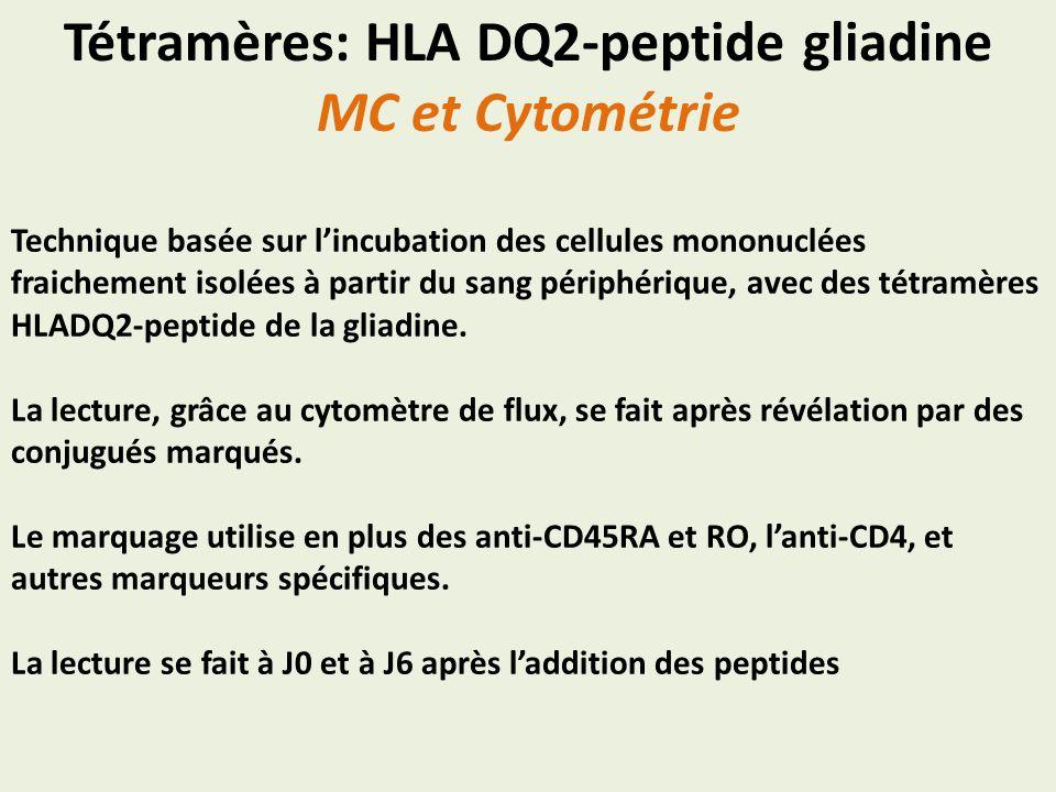 Tétramères: HLA DQ2-peptide gliadine MC et Cytométrie Technique basée sur lincubation des cellules mononuclées fraichement isolées à partir du sang pé