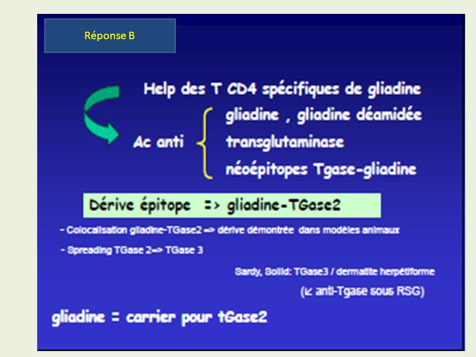 Diagnostic Immunologique de la maladie cœliaque maladie cœliaque .