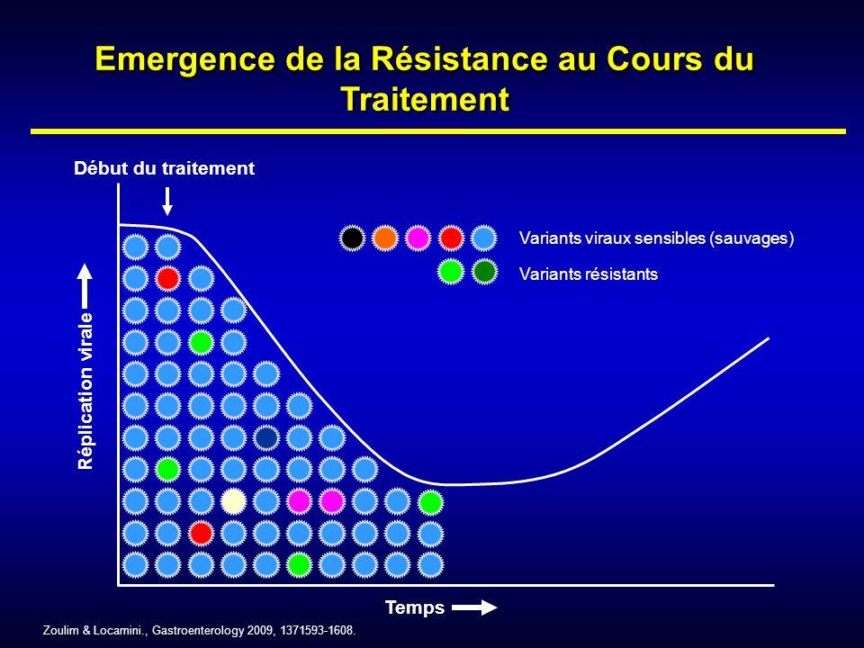 Réplication virale Temps Début du traitement Variants résistants Variants viraux sensibles (sauvages) Zoulim & Locarnini., Gastroenterology 2009, 1371