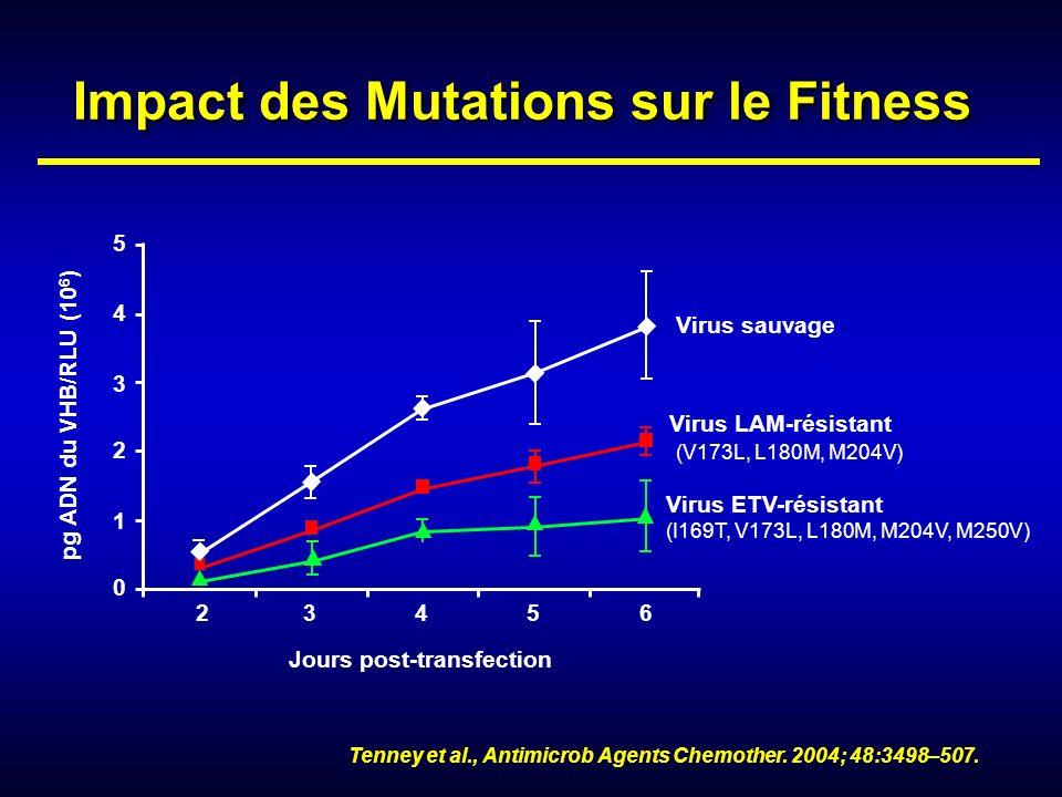 Impact des Mutations sur le Fitness Virus sauvage Virus LAM-résistant (V173L, L180M, M204V) Virus ETV-résistant (I169T, V173L, L180M, M204V, M250V) 23