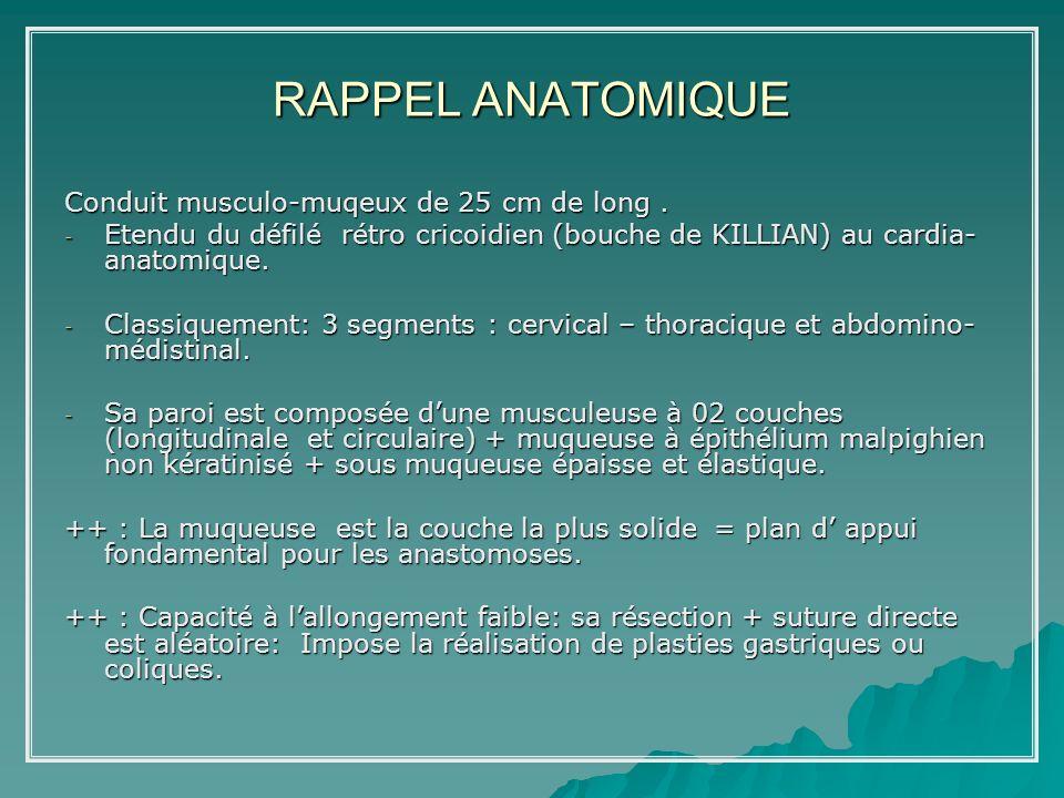 RAPPEL ANATOMIQUE Conduit musculo-muqeux de 25 cm de long. - Etendu du défilé rétro cricoidien (bouche de KILLIAN) au cardia- anatomique. - Classiquem