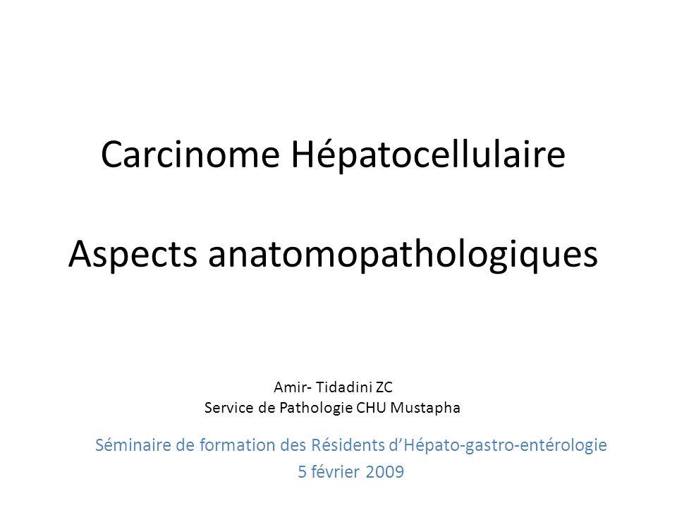 Carcinome Hépatocellulaire Aspects anatomopathologiques Amir- Tidadini ZC Service de Pathologie CHU Mustapha Séminaire de formation des Résidents dHép
