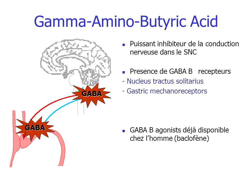 Gamma-Amino-Butyric Acid GABA GABA Puissant inhibiteur de la conduction nerveuse dans le SNC Presence de GABA B recepteurs - Nucleus tractus solitariu