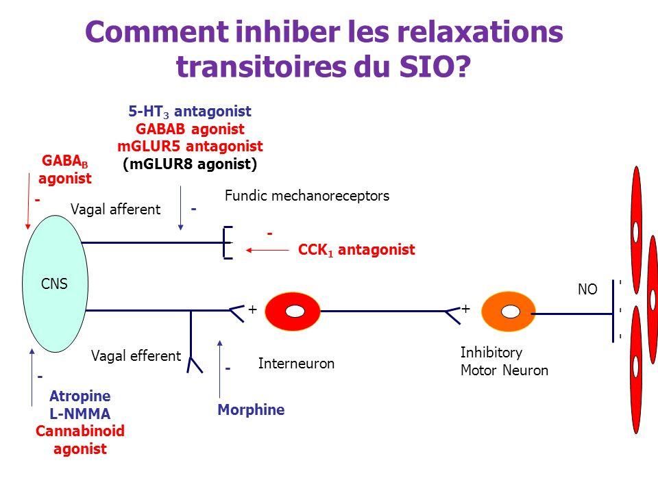Inhibitory Motor Neuron - - - NO + + Interneuron Vagal efferent CNS Vagal afferent Fundic mechanoreceptors CCK 1 antagonist - 5-HT 3 antagonist GABAB