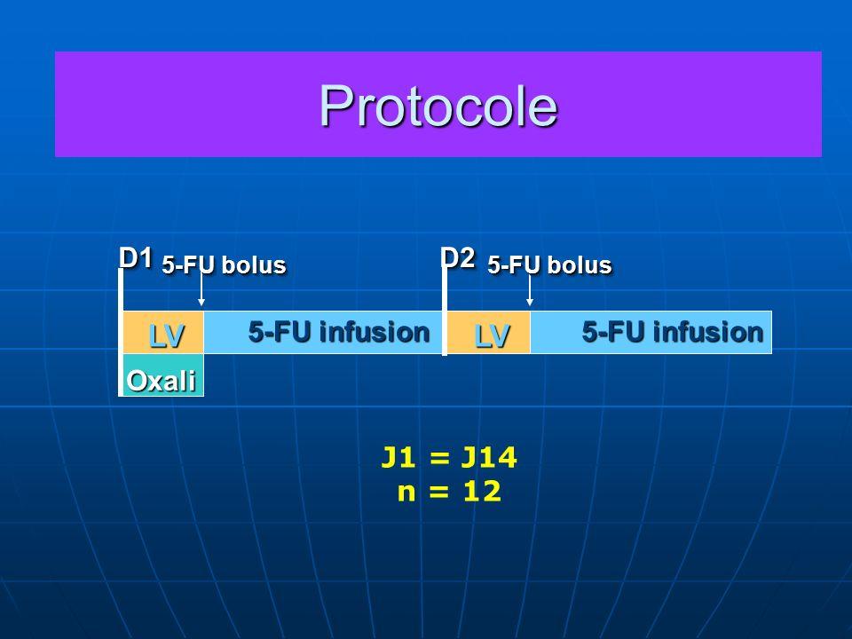Protocole LV Oxali D1D1 5-FU bolus D2D2 LVLV 5-FU infusion J1 = J14 n = 12
