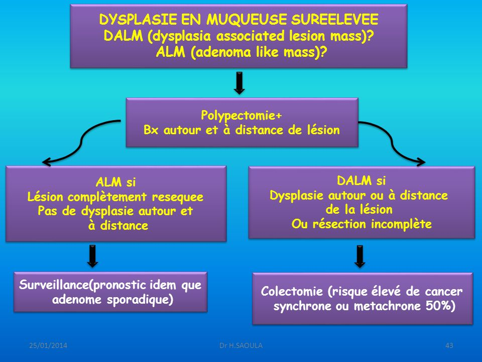 25/01/2014Dr H.SAOULA43 DYSPLASIE EN MUQUEUSE SUREELEVEE DALM (dysplasia associated lesion mass)? ALM (adenoma like mass)? DYSPLASIE EN MUQUEUSE SUREE