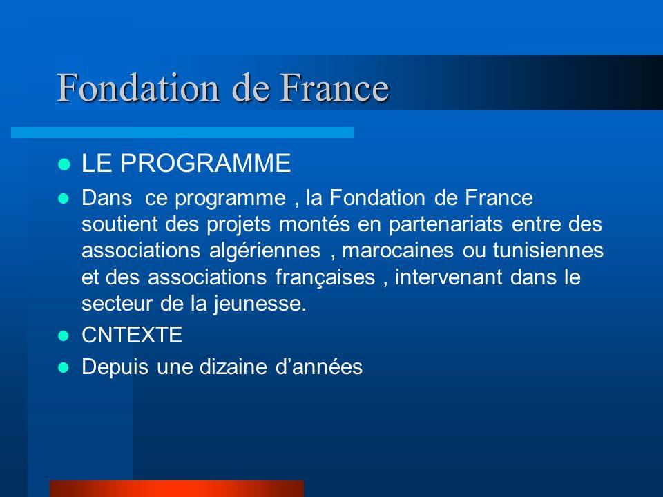 Fondation de France LE PROGRAMME Dans ce programme, la Fondation de France soutient des projets montés en partenariats entre des associations algériennes, marocaines ou tunisiennes et des associations françaises, intervenant dans le secteur de la jeunesse.