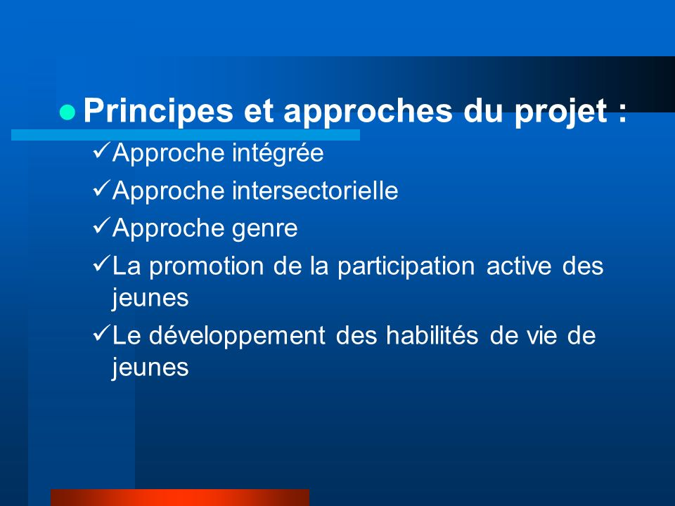 Principes et approches du projet : Approche intégrée Approche intersectorielle Approche genre La promotion de la participation active des jeunes Le développement des habilités de vie de jeunes