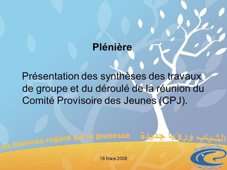 Plénière Présentation des synthèses des travaux de groupe et du déroulé de la réunion du Comité Provisoire des Jeunes (CPJ). 16 Mars 2008