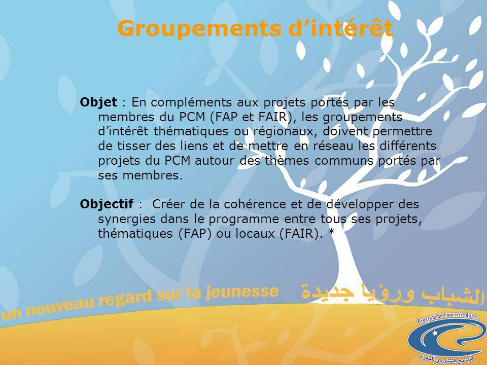 Groupements dintérêt Objet : En compléments aux projets portés par les membres du PCM (FAP et FAIR), les groupements dintérêt thématiques ou régionaux, doivent permettre de tisser des liens et de mettre en réseau les différents projets du PCM autour des thèmes communs portés par ses membres.