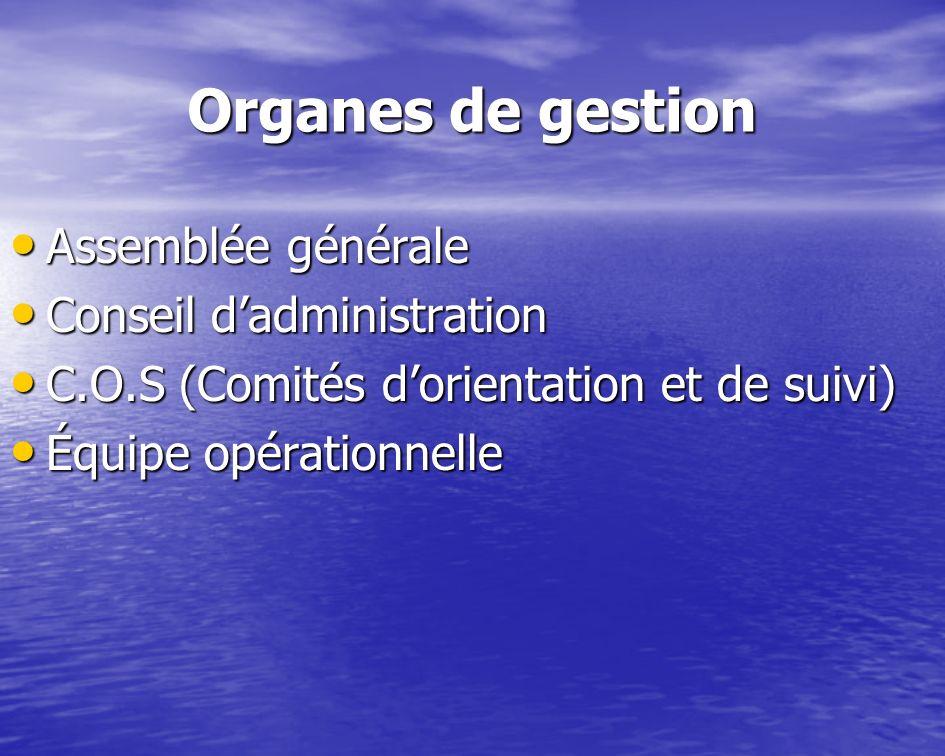 Organes de gestion Assemblée générale Assemblée générale Conseil dadministration Conseil dadministration C.O.S (Comités dorientation et de suivi) C.O.