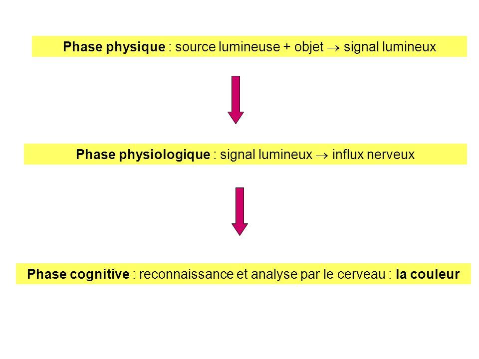 Phase physique : source lumineuse + objet signal lumineux Phase physiologique : signal lumineux influx nerveux Phase cognitive : reconnaissance et ana