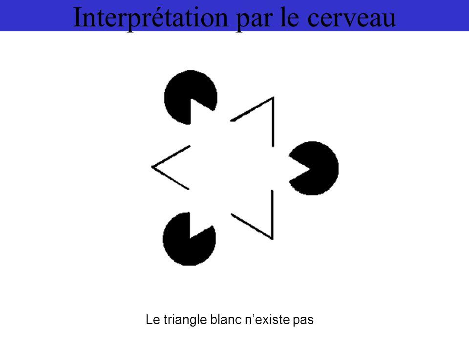 Interprétation par le cerveau Le triangle blanc nexiste pas