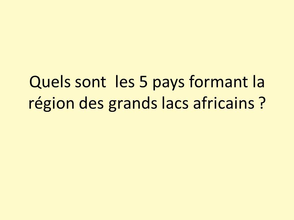 Quels sont les 5 pays formant la région des grands lacs africains ?