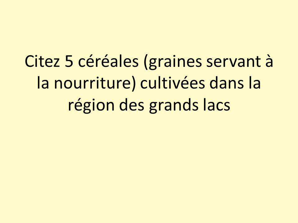 Citez 5 céréales (graines servant à la nourriture) cultivées dans la région des grands lacs
