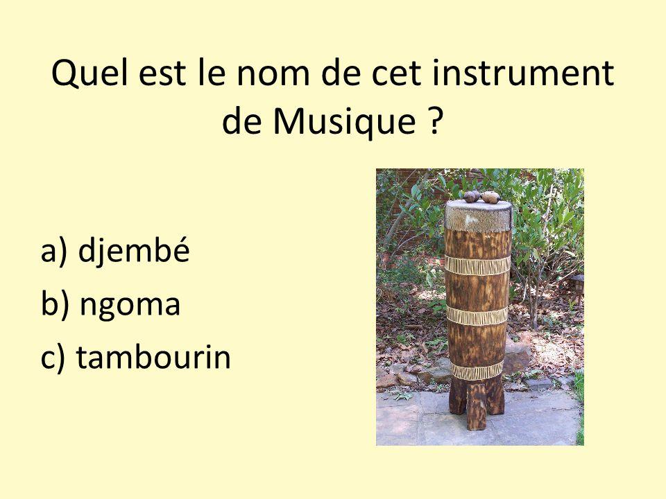 Quel est le nom de cet instrument de Musique ? a) djembé b) ngoma c) tambourin