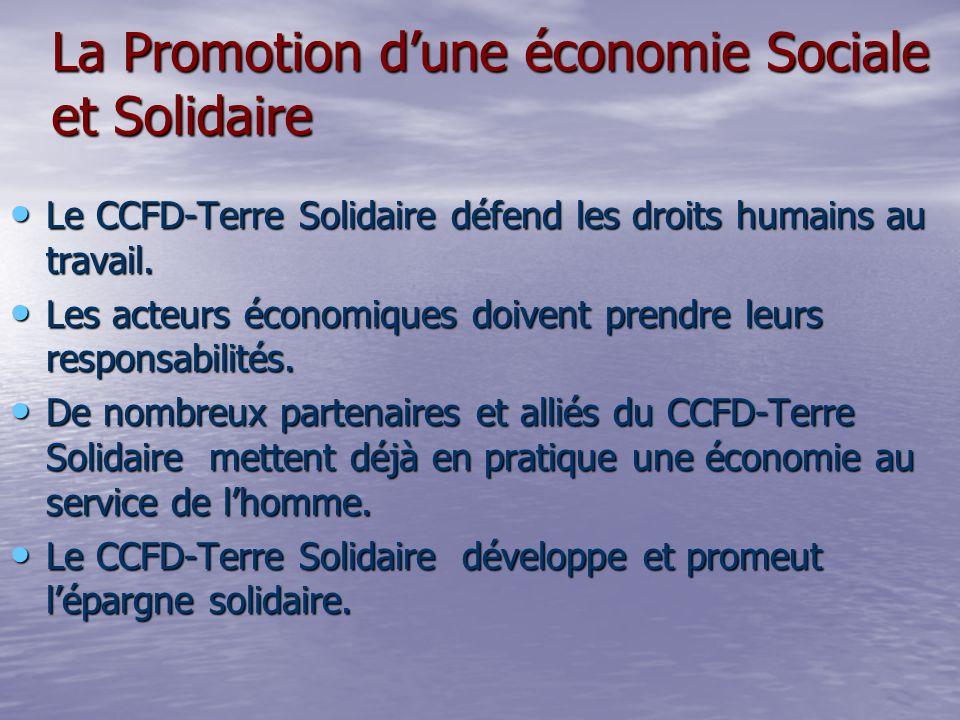 Le CCFD-Terre Solidaire défend les droits humains au travail.