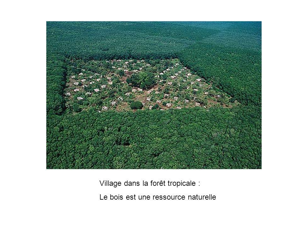 Village dans la forêt tropicale : Le bois est une ressource naturelle
