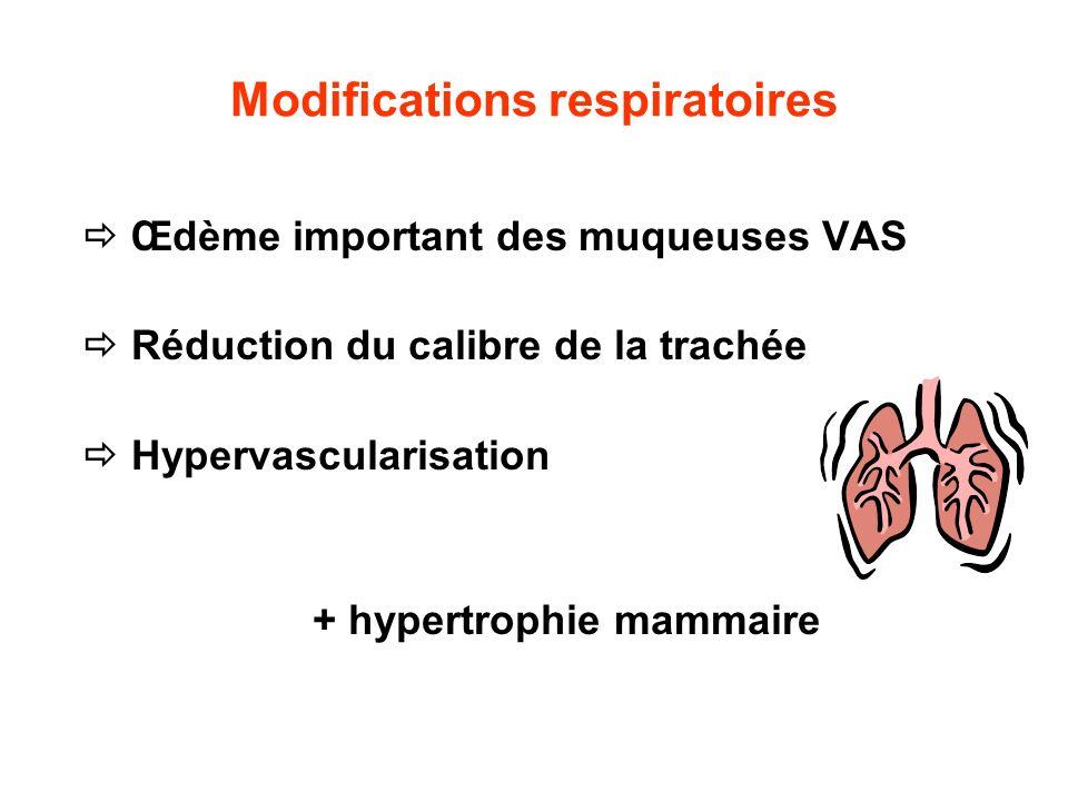 Modifications respiratoires Œdème important des muqueuses VAS Réduction du calibre de la trachée Hypervascularisation + hypertrophie mammaire