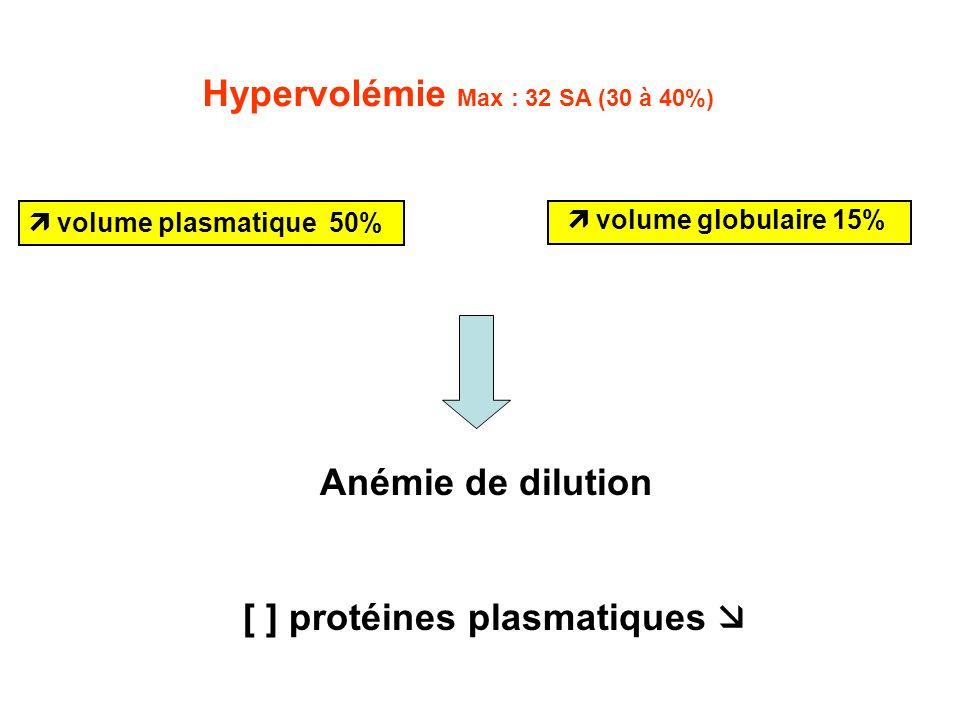 Anémie de dilution [ ] protéines plasmatiques Hypervolémie Max : 32 SA (30 à 40%) volume plasmatique 50% volume globulaire 15%