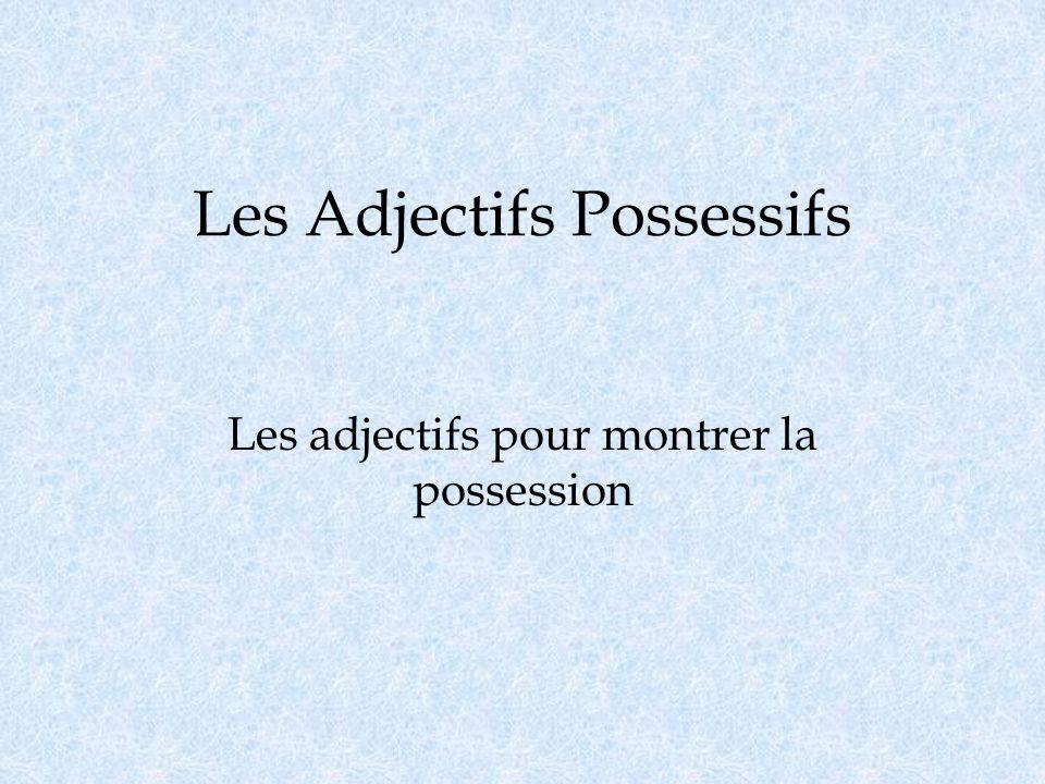 Les Adjectifs Possessifs Les adjectifs pour montrer la possession