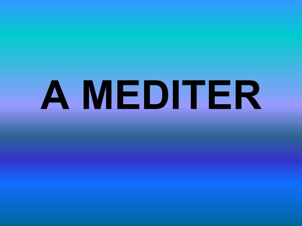 A MEDITER