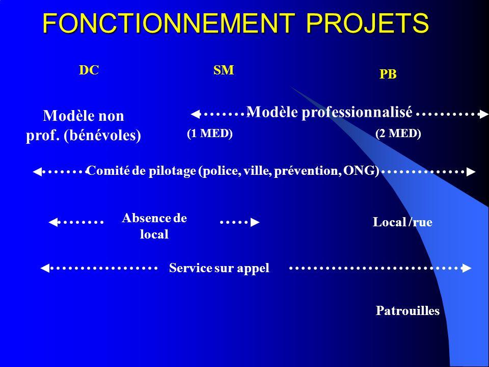 FONCTIONNEMENT PROJETS DCSM PB Modèle professionnalisé Modèle non prof.