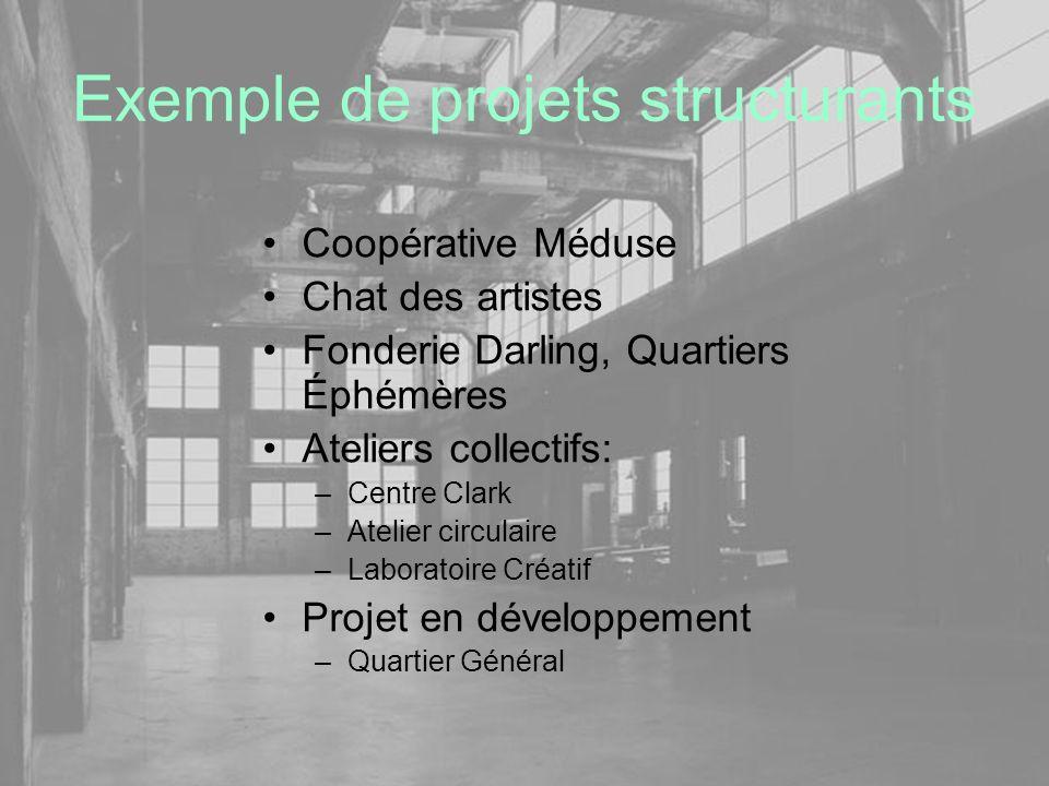Exemple de projets structurants Coopérative Méduse Chat des artistes Fonderie Darling, Quartiers Éphémères Ateliers collectifs: –Centre Clark –Atelier
