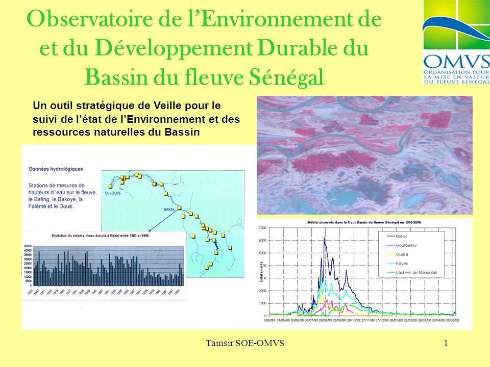 Tamsir SOE-OMVS1 Observatoire de lEnvironnement de et du Développement Durable du Bassin du fleuve Sénégal Un outil stratégique de Veille pour le suivi de létat de lEnvironnement et des ressources naturelles du Bassin