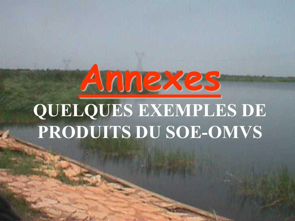 Tamsir SOE-OMVS47 Annexes Annexes QUELQUES EXEMPLES DE PRODUITS DU SOE-OMVS