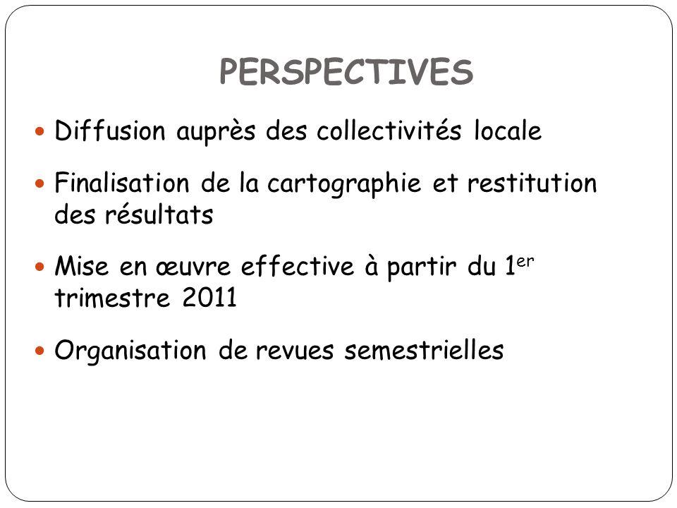 PERSPECTIVES Diffusion auprès des collectivités locale Finalisation de la cartographie et restitution des résultats Mise en œuvre effective à partir du 1 er trimestre 2011 Organisation de revues semestrielles