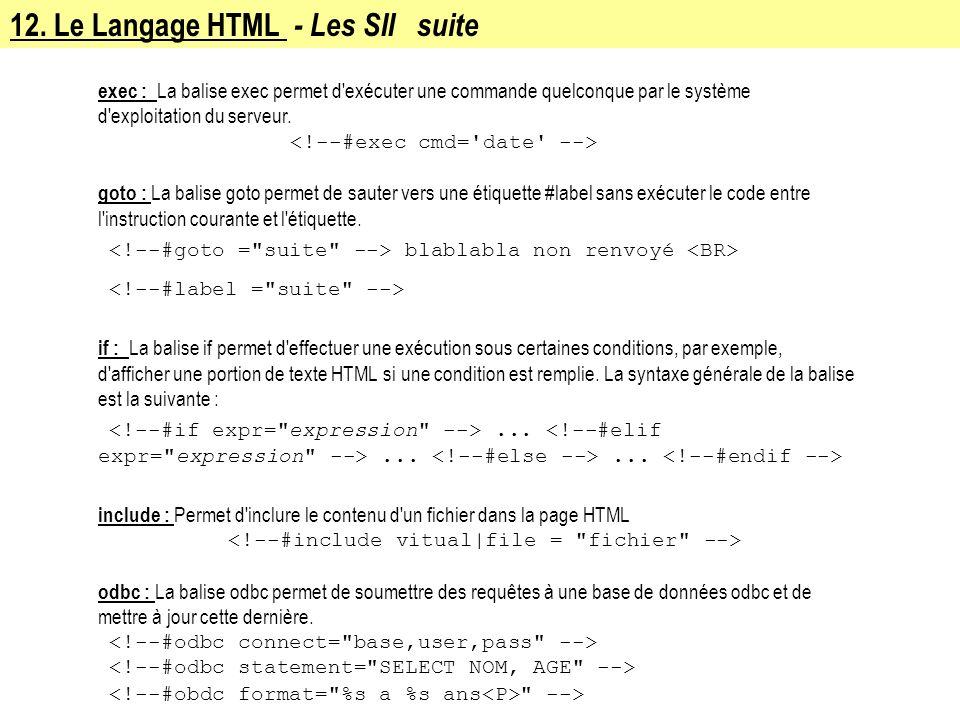 12. Le Langage HTML - Les SII suite exec : La balise exec permet d'exécuter une commande quelconque par le système d'exploitation du serveur. goto : L