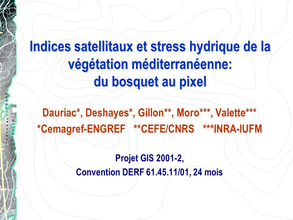 Indices satellitaux et stress hydrique de la végétation méditerranéenne: du bosquet au pixel Dauriac*, Deshayes*, Gillon**, Moro***, Valette*** *Cemag