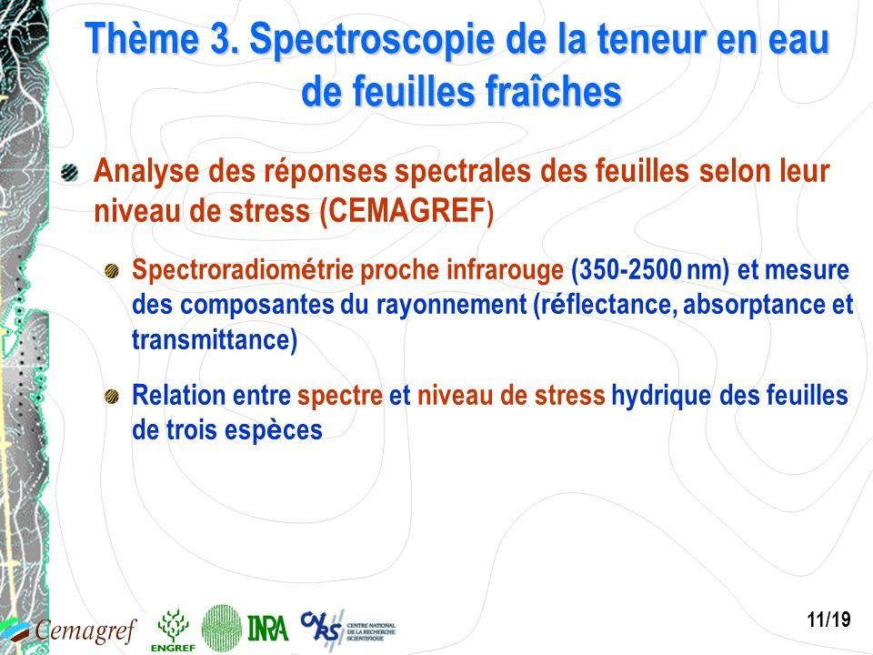 11/19 Thème 3. Spectroscopie de la teneur en eau de feuilles fraîches Analyse des réponses spectrales des feuilles selon leur niveau de stress (CEMAGR