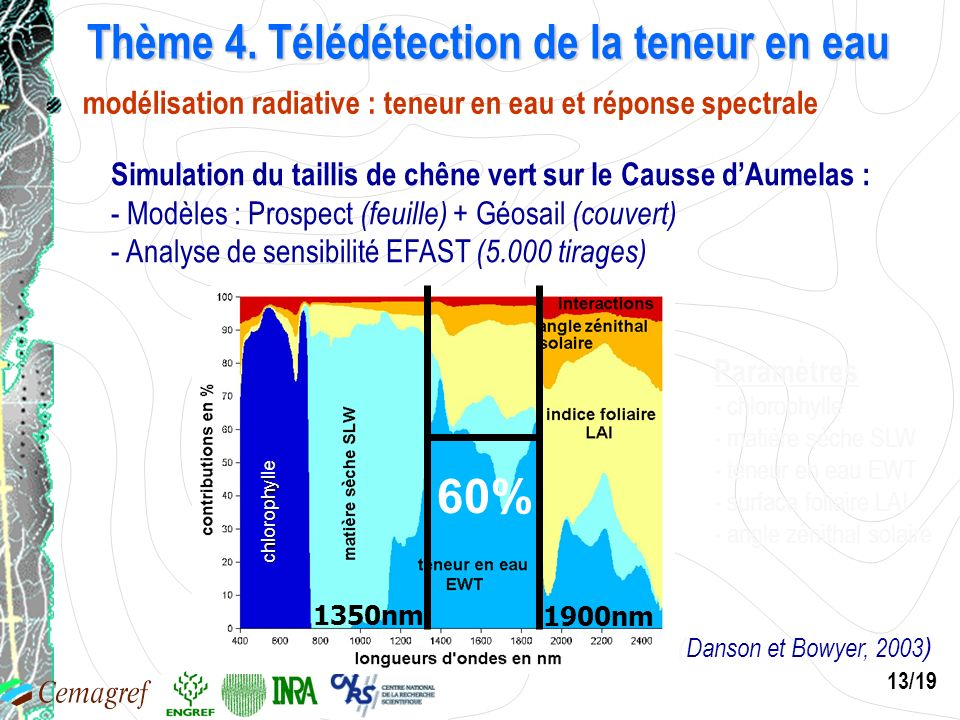 13/19 Thème 4. Télédétection de la teneur en eau Simulation du taillis de chêne vert sur le Causse dAumelas : - Modèles : Prospect (feuille) + Géosail