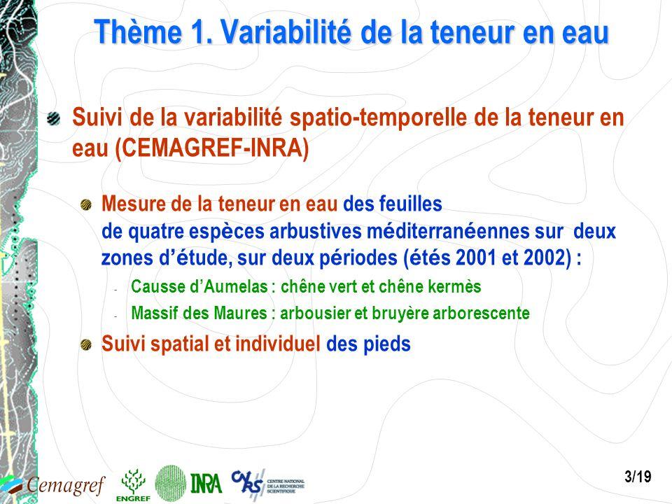 3/19 Thème 1. Variabilité de la teneur en eau Suivi de la variabilité spatio-temporelle de la teneur en eau (CEMAGREF-INRA) Mesure de la teneur en eau